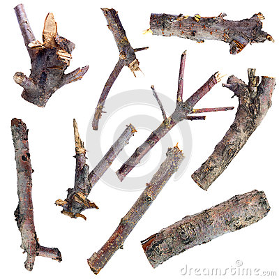 Free Set Of Dry Tree Branches Isolated On A White Background Stock Photos - 40387633