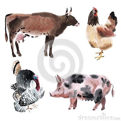 Free Set Of Farm Animals. Watercolor Illustration In White Background. Royalty Free Stock Photos - 53055928