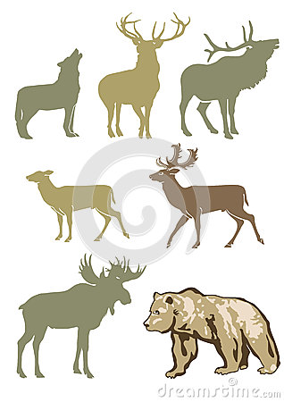 Free Set Of Forest Animals Royalty Free Stock Photos - 26447058