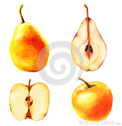 Free Set Of Four Apples And Pears Illustrations Stock Photos - 64920633