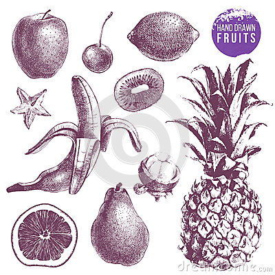 Free Set Of Hand Drawn Juicy Fruits. Stock Photo - 93924820
