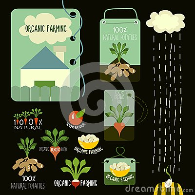 Free Set Of Organic And Farm Fresh Food Badges And Royalty Free Stock Photography - 49007317