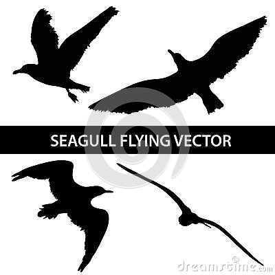Free Set Of Silhouette Seagull Flying 4 In 1 On White Background Royalty Free Stock Image - 62306276