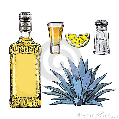 Free Set Of Tequila Bottle, Shot, Salt Mill, Agave And Lime Royalty Free Stock Photography - 79861657