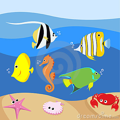Free Set Of Tropical Fishes Stock Photos - 24264103
