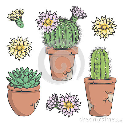 Free Set Of Vector Colored Cactus With Flowers In Old Pots. EPS10 Stock Photo - 69874440