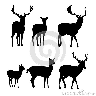 Free Set Of Vector Silhouettes Of Deer With A Fawn Royalty Free Stock Photography - 107523357