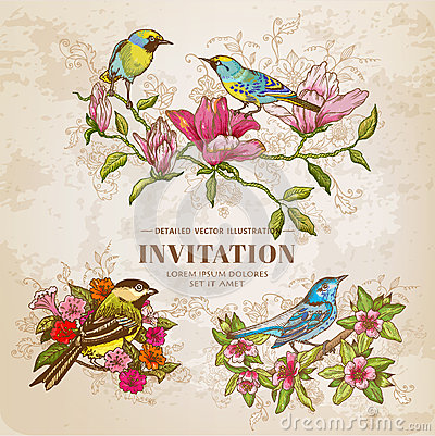 Free Set Of Vintage Flowers And Birds Stock Photos - 42687083