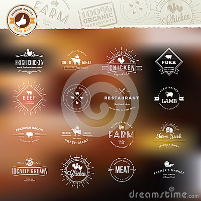 Free Set Of Vintage Style Elements For Labels And Badges For Meat Stock Image - 44812731