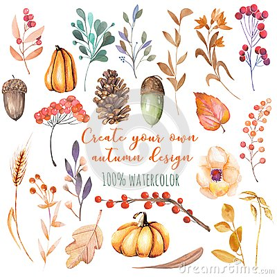 Free Set Of Watercolor Autumn Plants: Pumpkins, Fir Cones, Wheat Spikes, Yellow Leaves, Fall Berries, Acorns Stock Photo - 102219450