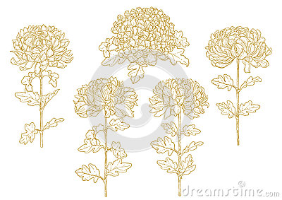 Set of one-colored outlined chrysanthemum