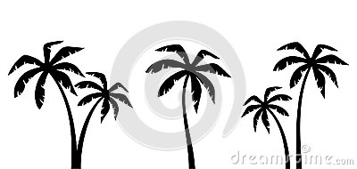 Set of palm trees. Vector black silhouettes. Vector Illustration
