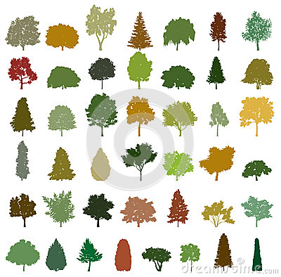 Set of retro silhouette trees. Vector