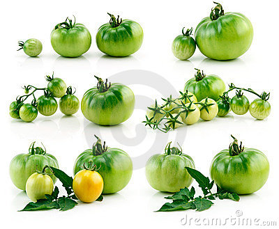Set of Ripe Yellow and Green Tomatoes Isolated
