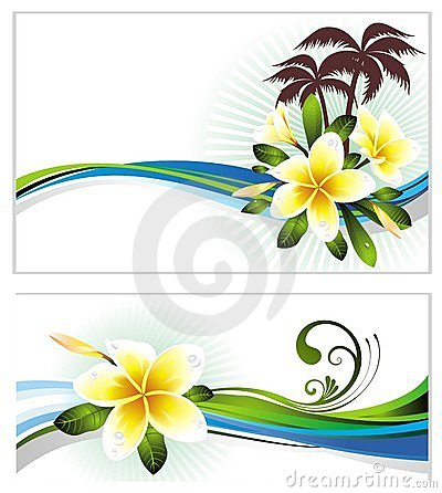 Set of summer banners with flowers