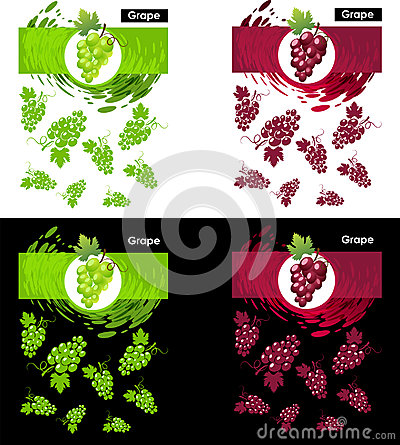 Set template icon of grapes fruit Vector Illustration