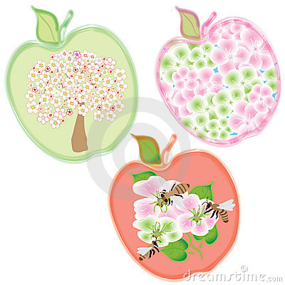 Set of three apple icons