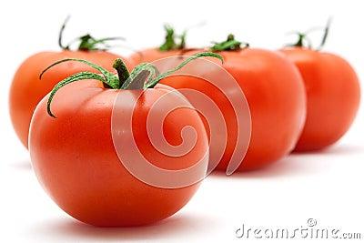 Set of tomatos