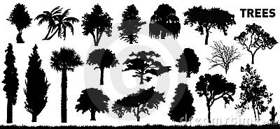Set of trees