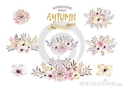 Set of watercolor boho floral bouquets. Watercolour bohemian natural frame: leaves, feathers, flowers, Isolated on white Cartoon Illustration