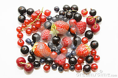 Set of wild berryes