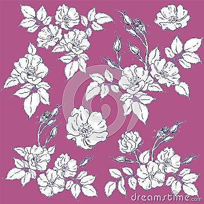 Set of wild rose