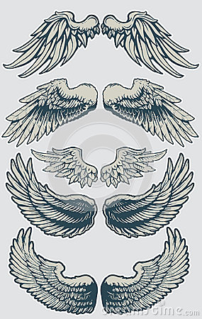 Wing Set 1 Vector Illustration