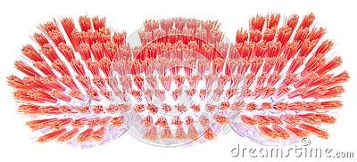 Setole vibranti di una spazzola di pulizie di primavera.