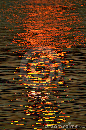 Setting sun reflected in the surface of a river