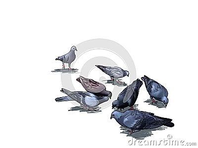 Seven pigeons seek for food in cartoon style