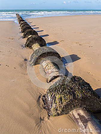 Sewage Outflow Pipe
