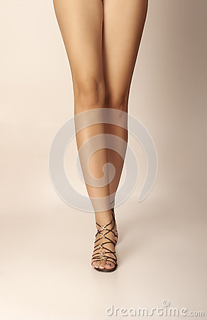 Free Sexy Legs Royalty Free Stock Photography - 31482467