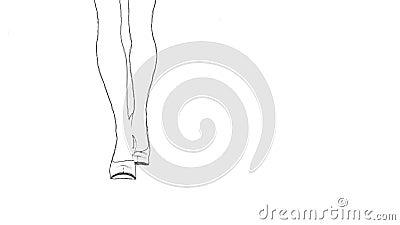 legs in high heels outline sketch loopable stock footage