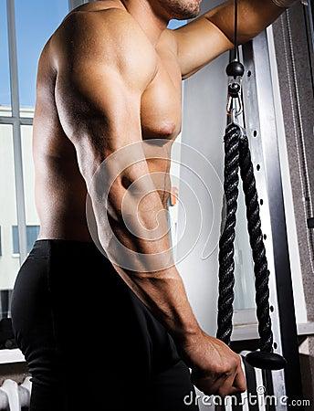 Sexy man s torso