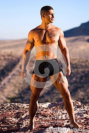 Free Sexy Muscular Man. Royalty Free Stock Photo - 3517105