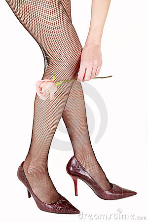 Sexy net stockings with rose