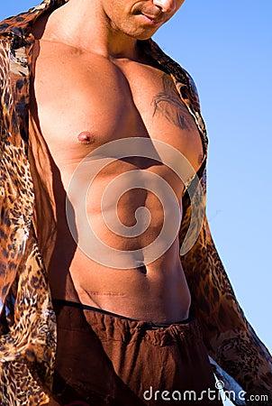 Sexy torso.