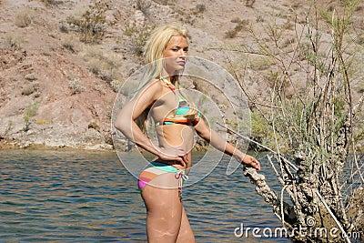 Sexy woman in bikini