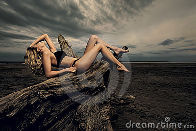 Sexy woman on driftwood