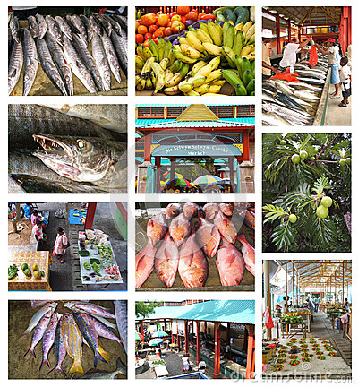 Seychelles Editorial Photo