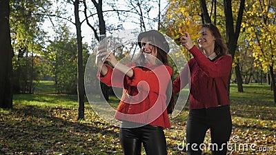 Sezon jesienny, zabawne uwodzicielskie dziewczyny przyjaciółki robią zdjęcia przez telefon na tle jesiennych liści w parku na spa zdjęcie wideo
