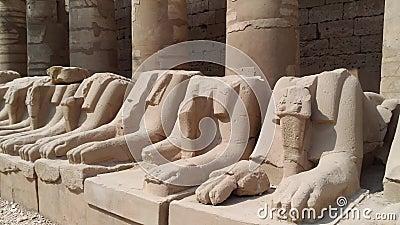 Sfinxskulptur med RAMs huvud Karnak i Luxor lager videofilmer
