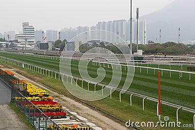 Sha Tin Racecourse, Hong Kong Editorial Stock Image