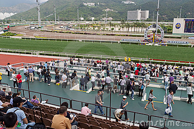 Sha Tin Racecourse : Queen Elizabeth II Cup Editorial Stock Photo