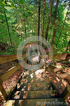Free Shades State Park Staircase Landscape Stock Photography - 104585982