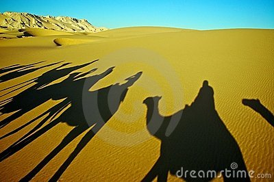 Shadow of Camel Caravan