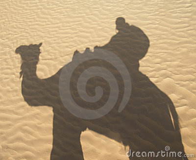 Shadow of a camel rider