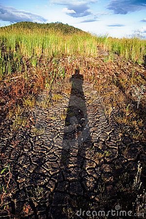 Shadow in Drought