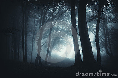 Shadow sneaking in the dark forest