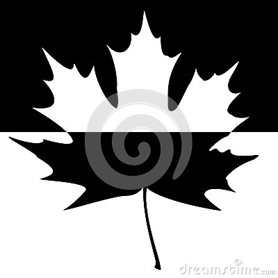 Shadowed Maple Leaf Silhouette